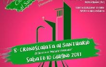 8^ CRONOSCALATA AL SANTUARIO MERCOGLIANO - MONTEVERGINE dedicata a